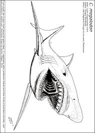 mako shark clipart megalodon pencil and in color mako shark