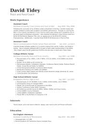 ceo resume track record it cover letter examples application keen     A  Resumes for Teachers