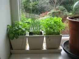 9 best indoor herb gardens in 2017 indoor gardens for growing