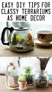diy tips for classy terrariums as home decor