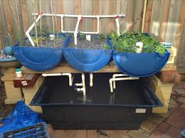 Perfect Aquaponics Designs For Your Own Aquaponics System - Backyard aquaponics system design