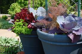 beautiful indoor container garden ideas front garden design ideas