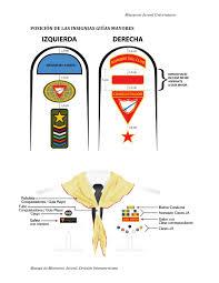 posición de insignias guías mayores