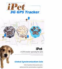 online buy wholesale cat gps tracker from china cat gps tracker