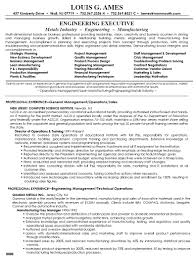 Resume Sample Director by 100 Bpo Resume Sample Resume Pdf Template Resume Cv Cover