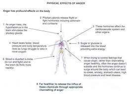 images about Anger management on Pinterest   American     Pinterest