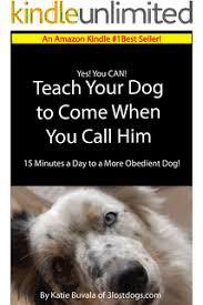 amazon black friday dog shock gps amazon com hidden secrets behind dog training a game changer in
