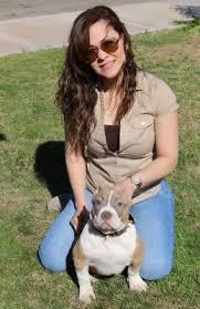 american pitbull terrier for sale in dallas texas xl pitbulls for sale bully pitbulls for sale american bully pitbulls