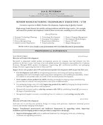 Best Executive Resume Format by Download Cto Resume Examples Haadyaooverbayresort Com