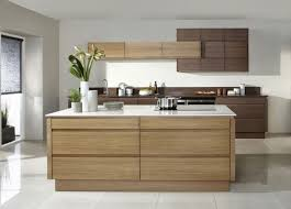 Kitchen Oak Cabinets by Modern Kitchen With Handleless Doors And Oak Cabinets Sleek