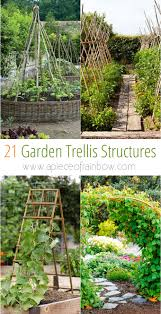 Vertical Garden Vegetables by 10 Ways To Style Your Very Own Vegetable Garden Privacy Fences