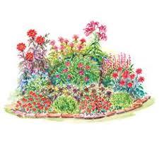 small garden plans and ideas baptisia australis black eyed