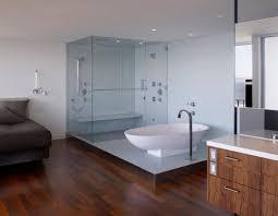Interior Frameless Glass Door by Apartment Gorgeous Bathroom Decoration Interior Design Ideas For