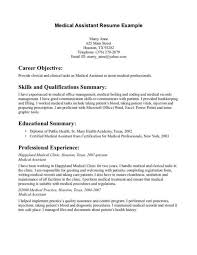 Sample Babysitter Resume by Resume Digital Marketing Resume Sample Templates Of Cv In Ms