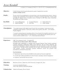 Best Professional Example of Resume Template with Client Service Oriented Career Summary