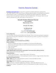 Computer Science Resume Template  printable resume templates     soymujer co