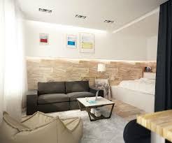 idei de design pentru garsoniera one room apartment design ideas