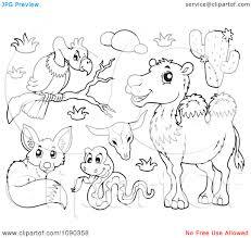 100 desert coloring pages desert animals clipart black and