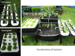 Best  Aquaponics System Ideas On Pinterest Aquaponics - Backyard aquaponics system design