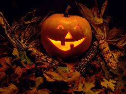 halloween background of wich