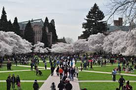 Universidade de Washington