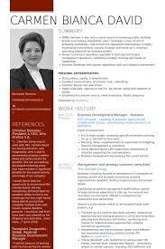 resume objective examples employee relations manager resume       relationship manager resume My Perfect Resume