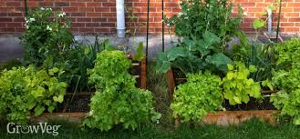 Planning A Raised Bed Vegetable Garden by Planning A Square Foot Vegetable Garden