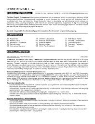 Sample Of A Resume Example Of A Professional Resume Berathen Com