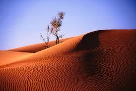 Najveće pustinje na svetu  Images?q=tbn:ANd9GcTuG_7o8v-ddASx72XdBJV6z9Mn5LBAw-n0ELKWN_VKJA1D-CQJjAdzrbjkBA