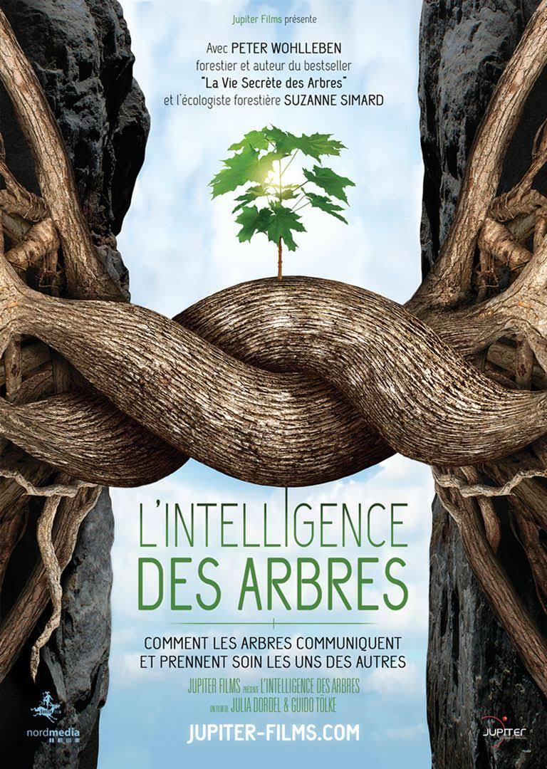 """TULLE: projection  """"L'intelligence des arbres"""" suivi d'un débat. @ Cinéma VEO"""