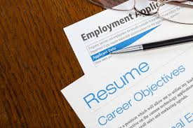 resume writing  professional resume editing service resume writing
