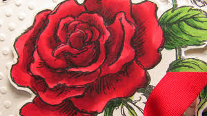 coloring red red rose copic markers