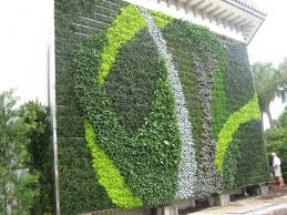 exquisite outdoor wall garden design combined with fresh fountain