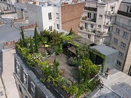 Rooftop Garden Ideas Best 25 Rooftop Gardens Ideas On Pinterest Rooftop Jennifer