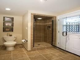 Small Bathroom In A Basement Design Ideas Plans Bathroom Design - Basement bathroom design ideas
