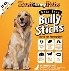 amazon black friday dog shock gps amazon com tornaqui dog shock collar training anti bark collar