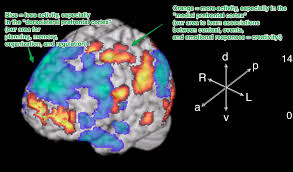 why we have our best ideas in the shower the science of brain1
