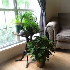 Office Desk Plants by Plant Stand Best Plant Table Ideas Only On Pinterest Green
