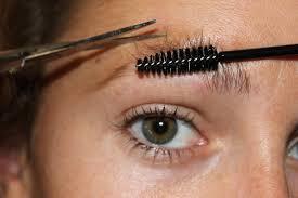 top 5 brow shapes not to do elke von freudenberg salon brow