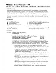 how to write a resume for free free professional resume examples sample of a professional resume resume examples templates resume summary examples how to write a resume profile summary for customer