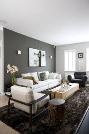 Living Room Colors With Brown Furniture Best 25 Accent Wall Colors Ideas On Pinterest Blue Accent Walls