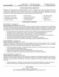 Corporate Resume Examples   Sumaquina co   corporate resume examples
