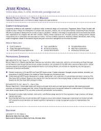 Sample Resume Objective Statement      Examples in PDF