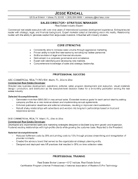 sample resume for international jobs resume for real estate manager free resume example and writing real estate developer resume sample