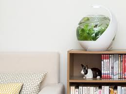 3 cool tech gadgets for your pets hgtv