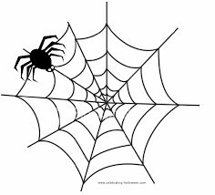 halloween spider images