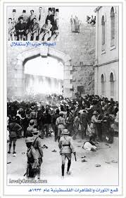 اخبار فلسطين96 28855