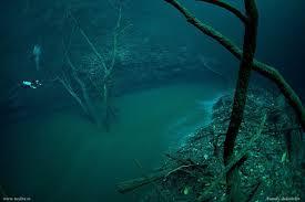 "Jika anda seorang penyelam, maka anda harus mengunjungi Cenote Angelita, Mexico. Disana ada sebuah gua. Jika anda menyelam sampai kedalaman 30 meter, airnya air segar (tawar), namun jika anda menyelam sampai kedalaman lebih dari 60 meter, airnya menjadi air asin, lalu anda dapat melihat sebuah ""sungai"" di dasarnya, lengkap dengan pohon dan daun daunan.  Namun pengkaji mengatakan, itu bukanlah sungai biasa, itu adalah lapisan hidrogen sulfida, namun nampak seperti sungai... luar biasa bukan? Lihatlah betapa hebatnya ciptaan Allah s.w.t."