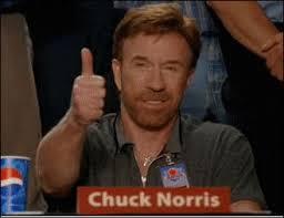 mi a5 camo como se ve  Chuck_norris_approved