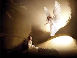 los angeles Angesinlove